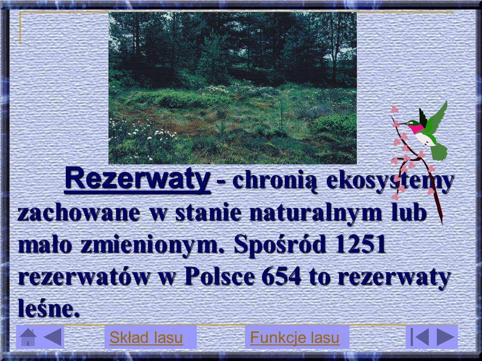 Rezerwaty - chronią ekosystemy zachowane w stanie naturalnym lub mało zmienionym. Spośród 1251 rezerwatów w Polsce 654 to rezerwaty leśne.