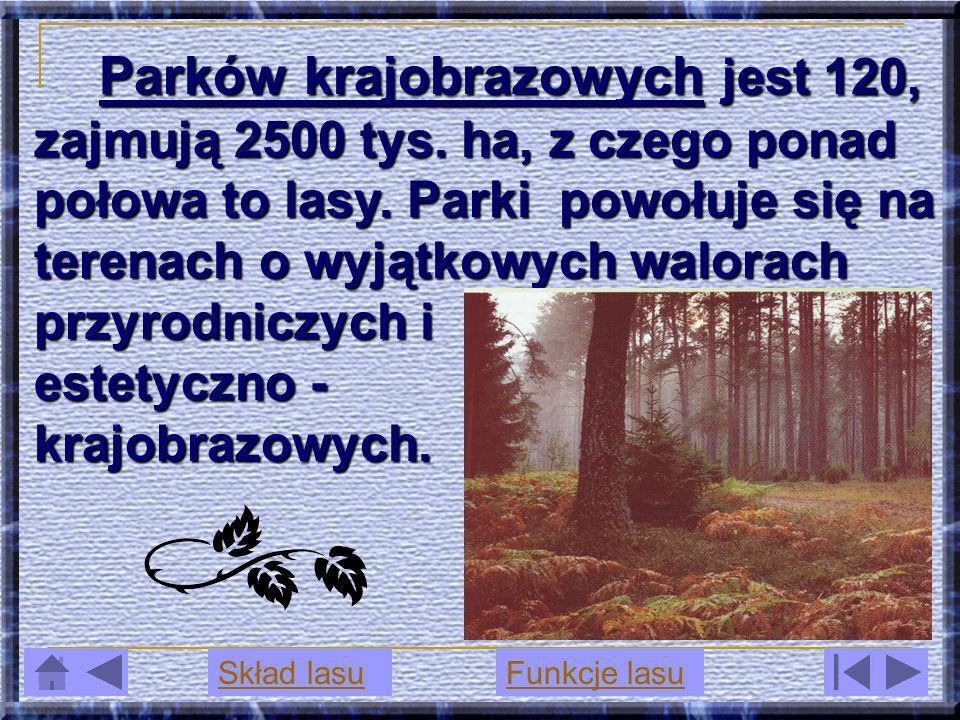 Parków krajobrazowych jest 120, zajmują 2500 tys