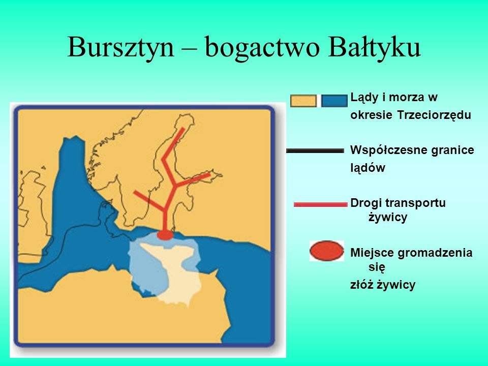 Bursztyn – bogactwo Bałtyku