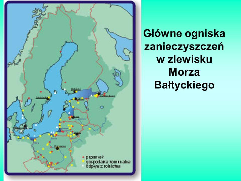Główne ogniska zanieczyszczeń w zlewisku Morza Bałtyckiego