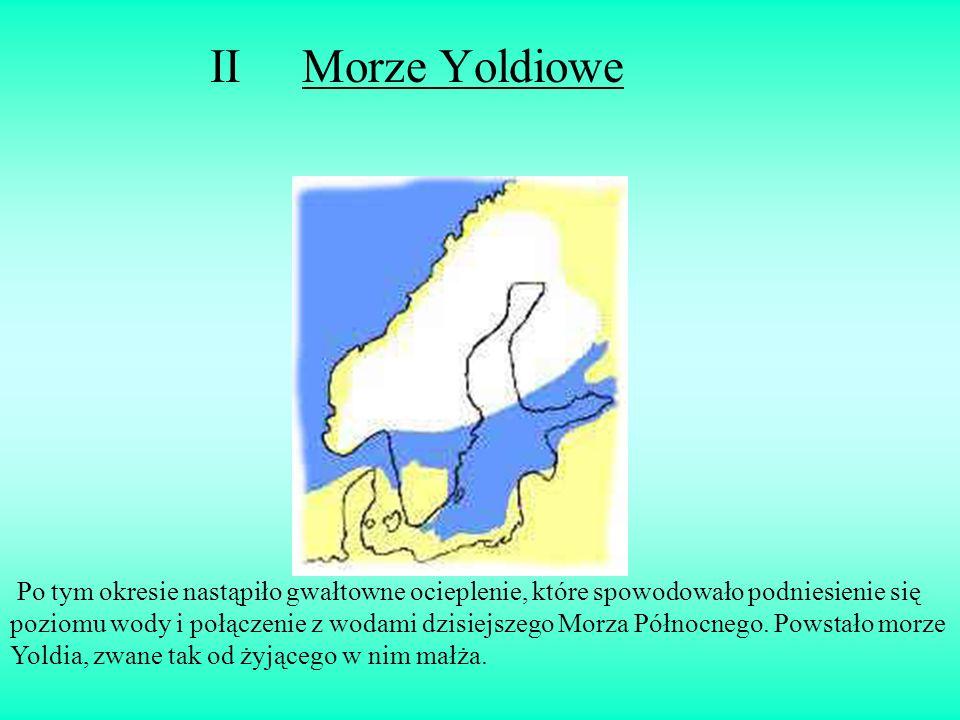 II Morze Yoldiowe