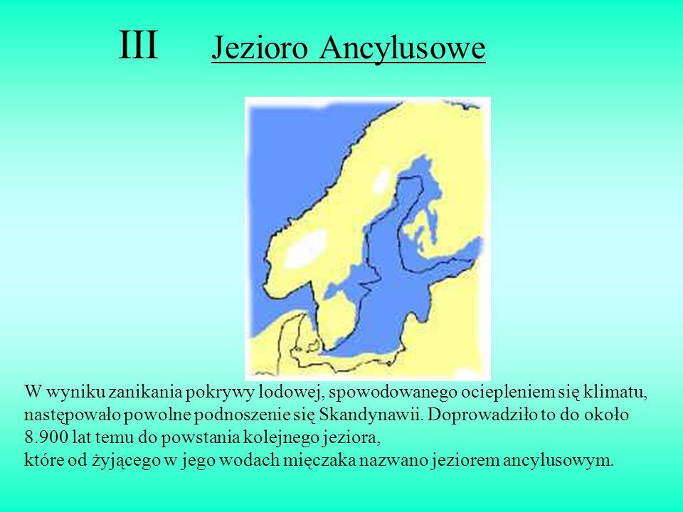 III Jezioro Ancylusowe