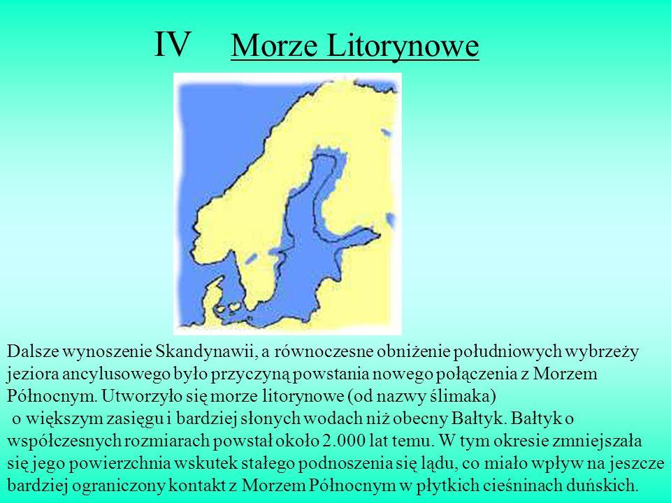 IV Morze Litorynowe