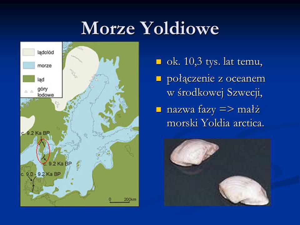 Morze Yoldiowe ok. 10,3 tys. lat temu,