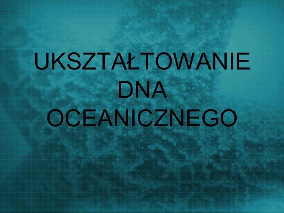 UKSZTAŁTOWANIE DNA OCEANICZNEGO