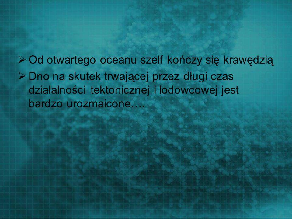 Od otwartego oceanu szelf kończy się krawędzią