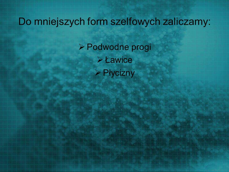 Do mniejszych form szelfowych zaliczamy: