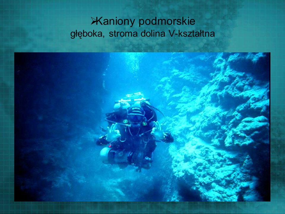 Kaniony podmorskie głęboka, stroma dolina V-kształtna