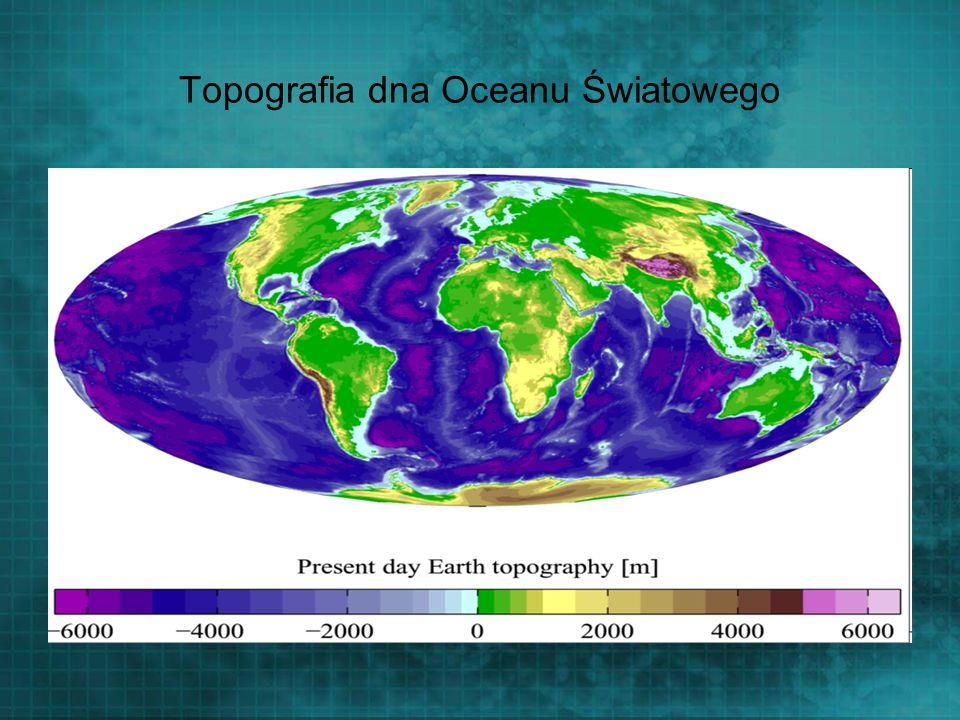 Topografia dna Oceanu Światowego