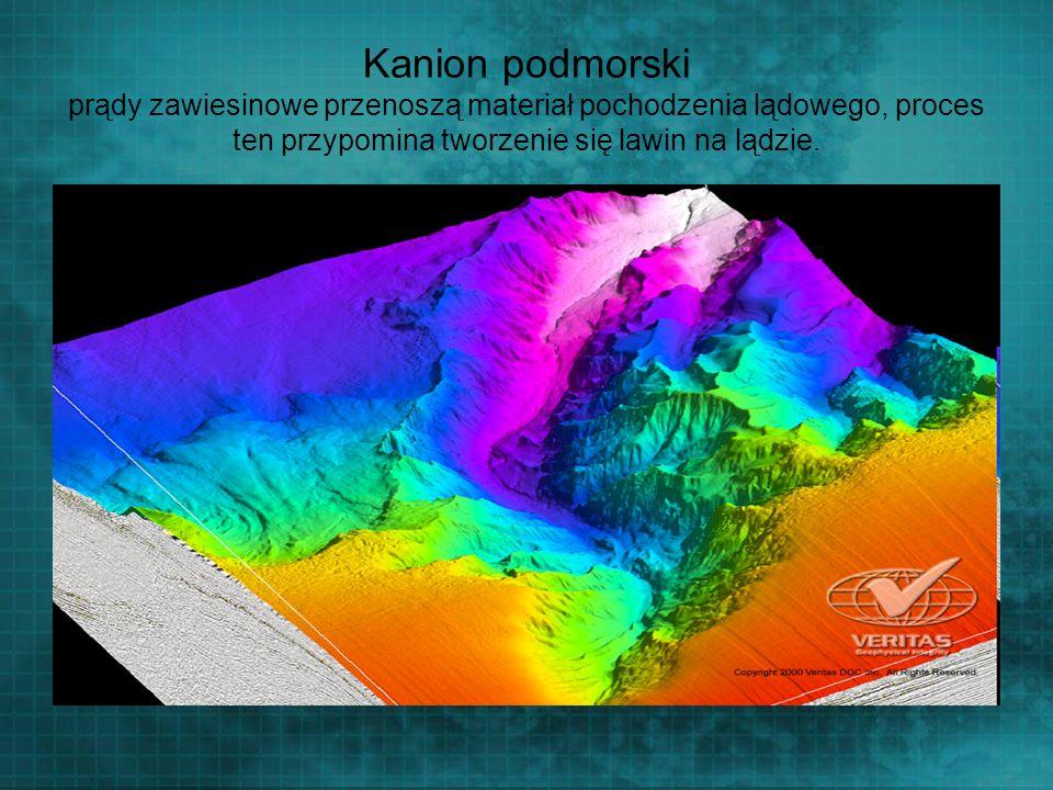 Kanion podmorski prądy zawiesinowe przenoszą materiał pochodzenia lądowego, proces ten przypomina tworzenie się lawin na lądzie.
