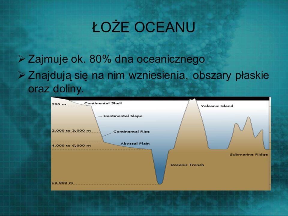 ŁOŻE OCEANU Zajmuje ok. 80% dna oceanicznego