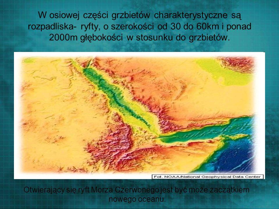 Otwierający się ryft Morza Czerwonego jest być może zaczątkiem