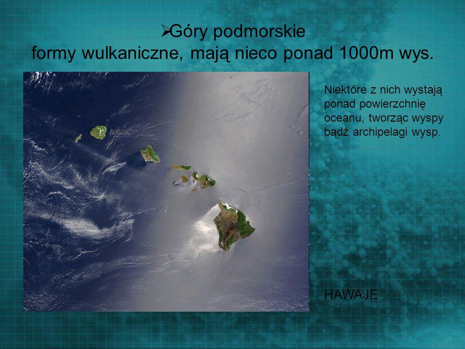 Góry podmorskie formy wulkaniczne, mają nieco ponad 1000m wys.