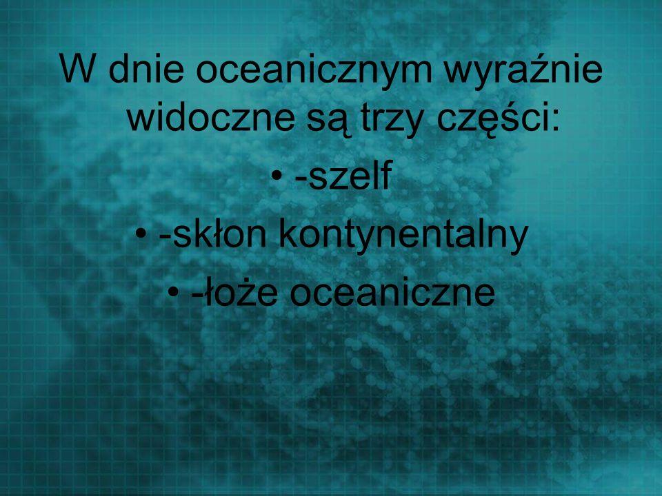 W dnie oceanicznym wyraźnie widoczne są trzy części:
