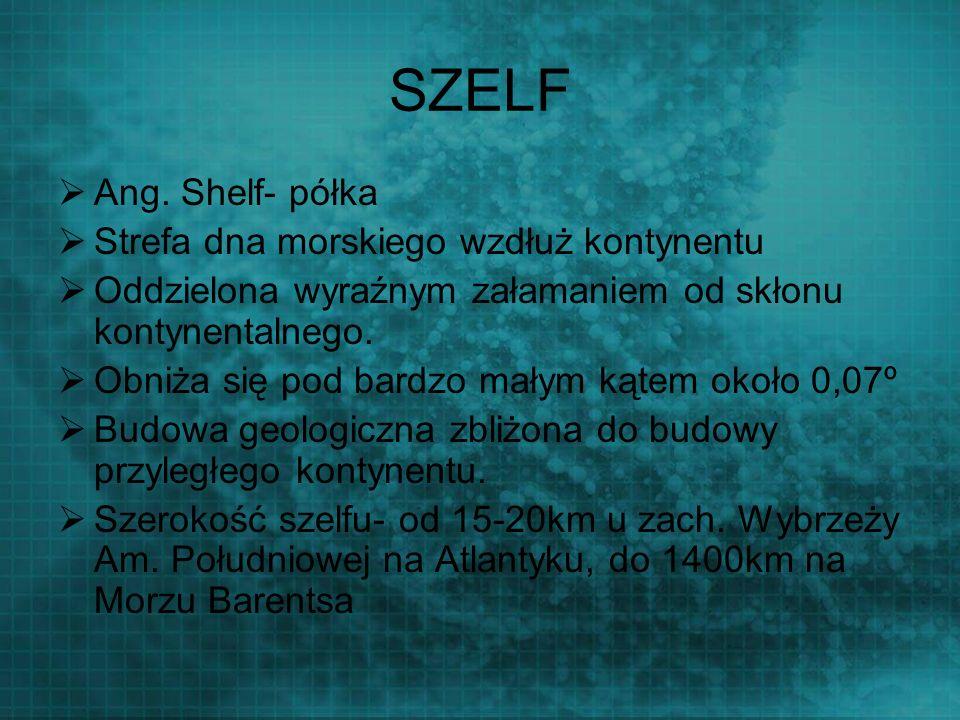 SZELF Ang. Shelf- półka Strefa dna morskiego wzdłuż kontynentu