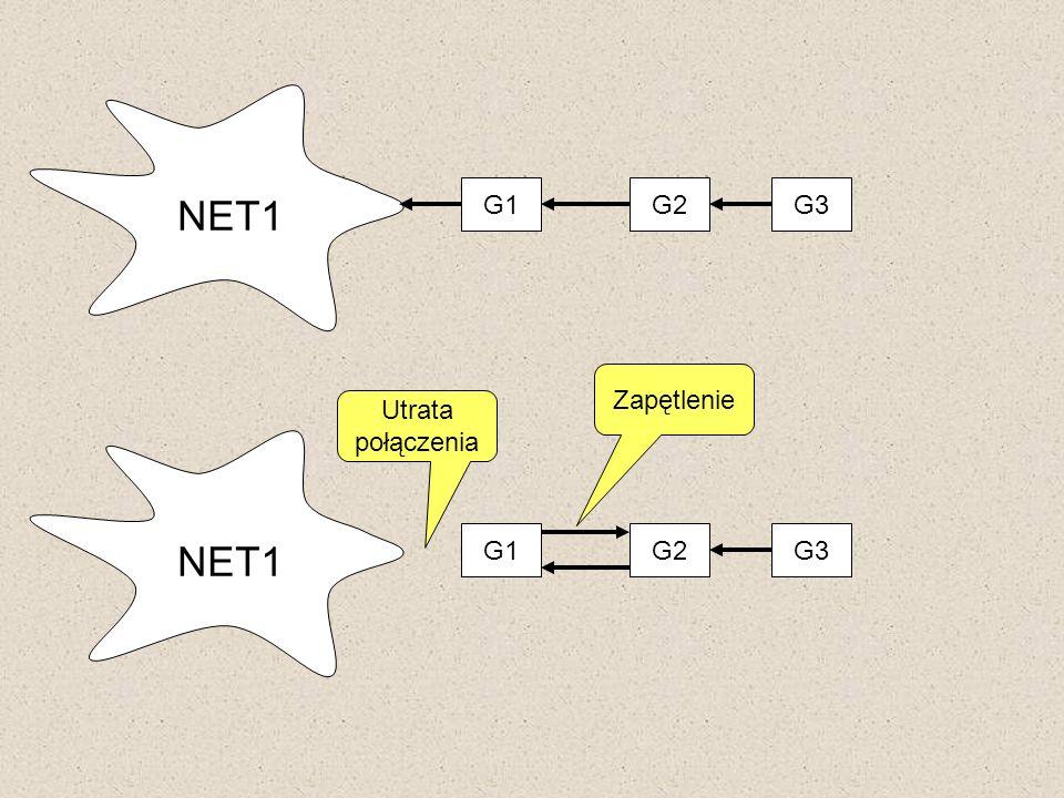 G1 G2 G3 NET1 Zapętlenie Utrata połączenia G1 G2 G3 NET1