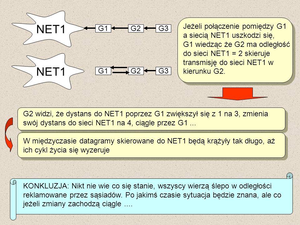NET1 NET1 Jeżeli połączenie pomiędzy G1 a siecią NET1 uszkodzi się,