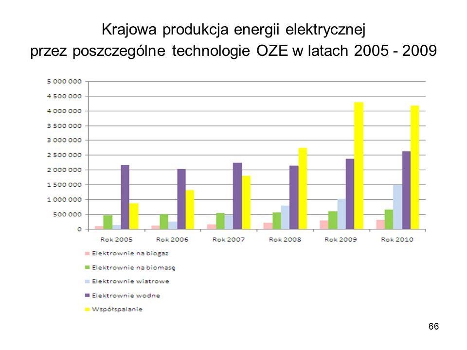 Krajowa produkcja energii elektrycznej przez poszczególne technologie OZE w latach 2005 - 2009