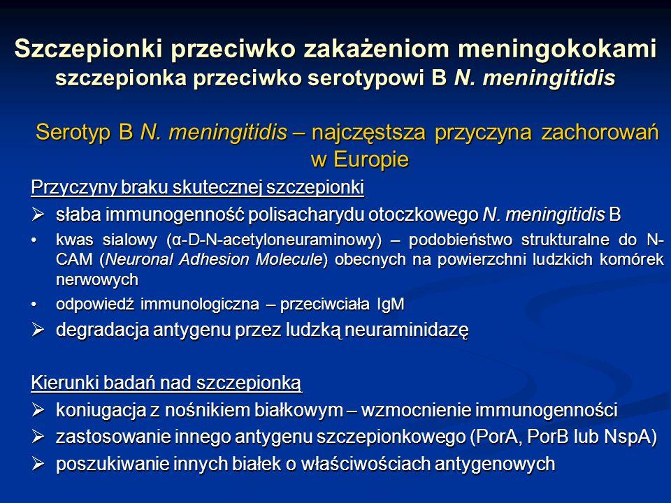 Serotyp B N. meningitidis – najczęstsza przyczyna zachorowań w Europie