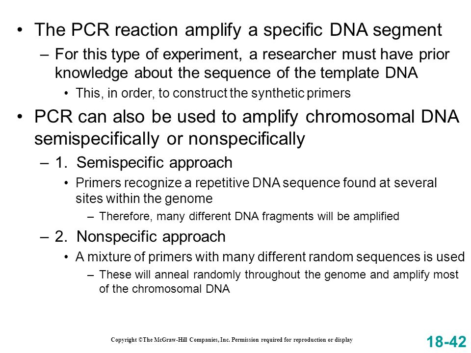 The PCR reaction amplify a specific DNA segment