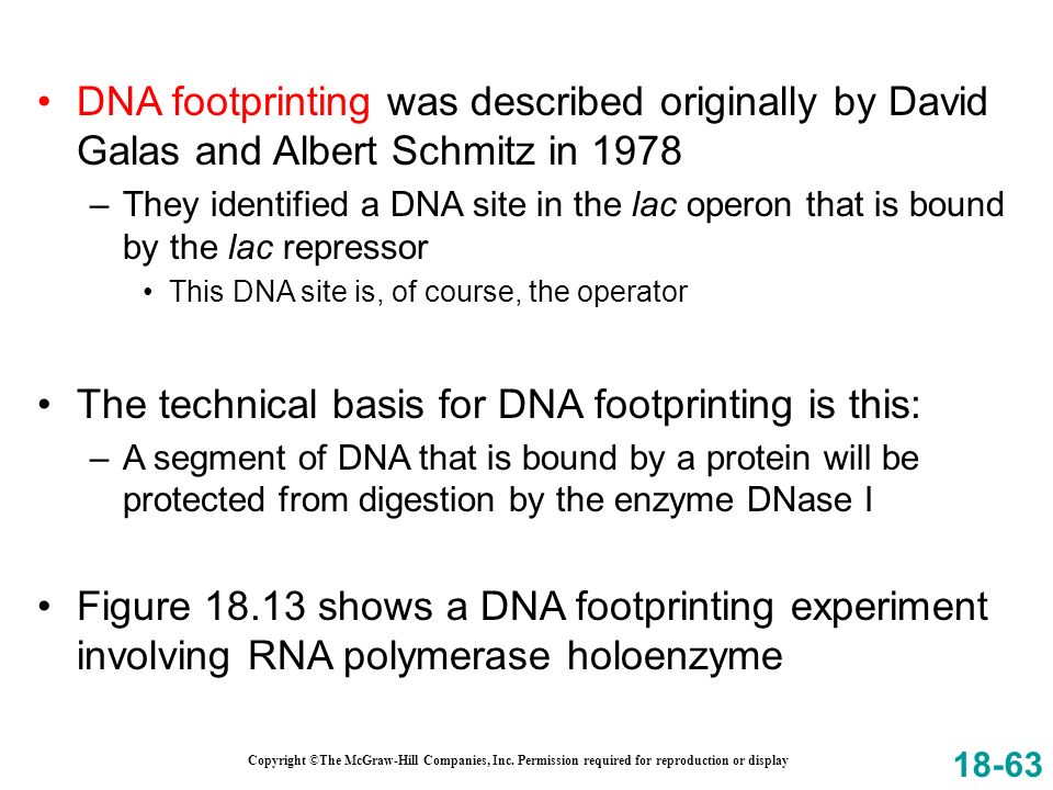 The technical basis for DNA footprinting is this: