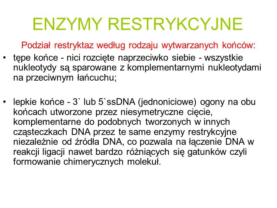Podział restryktaz według rodzaju wytwarzanych końców: