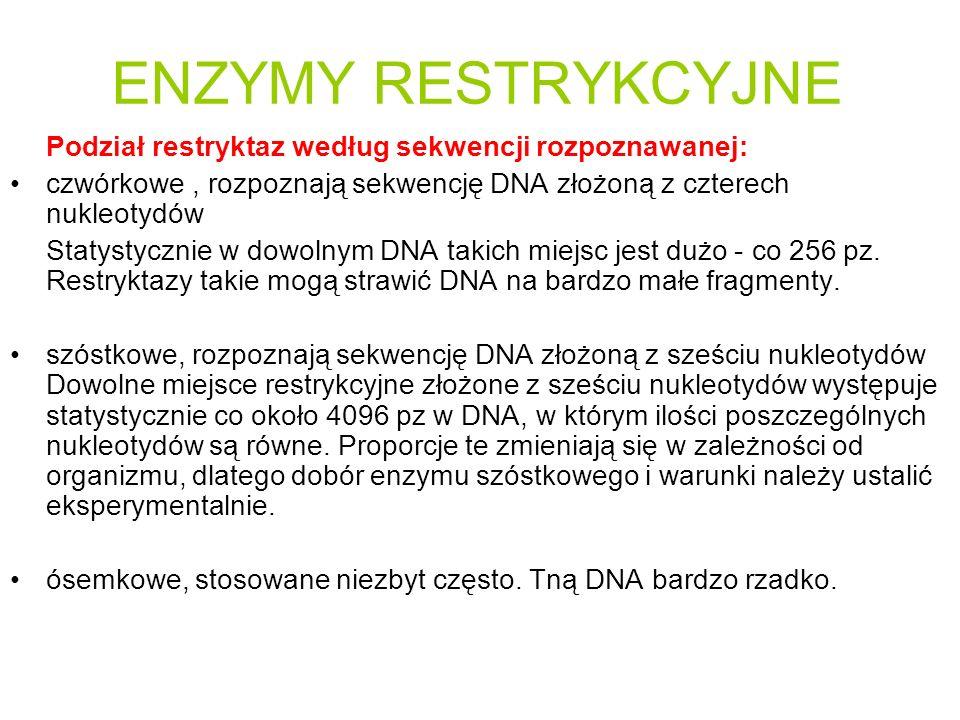 ENZYMY RESTRYKCYJNE Podział restryktaz według sekwencji rozpoznawanej: