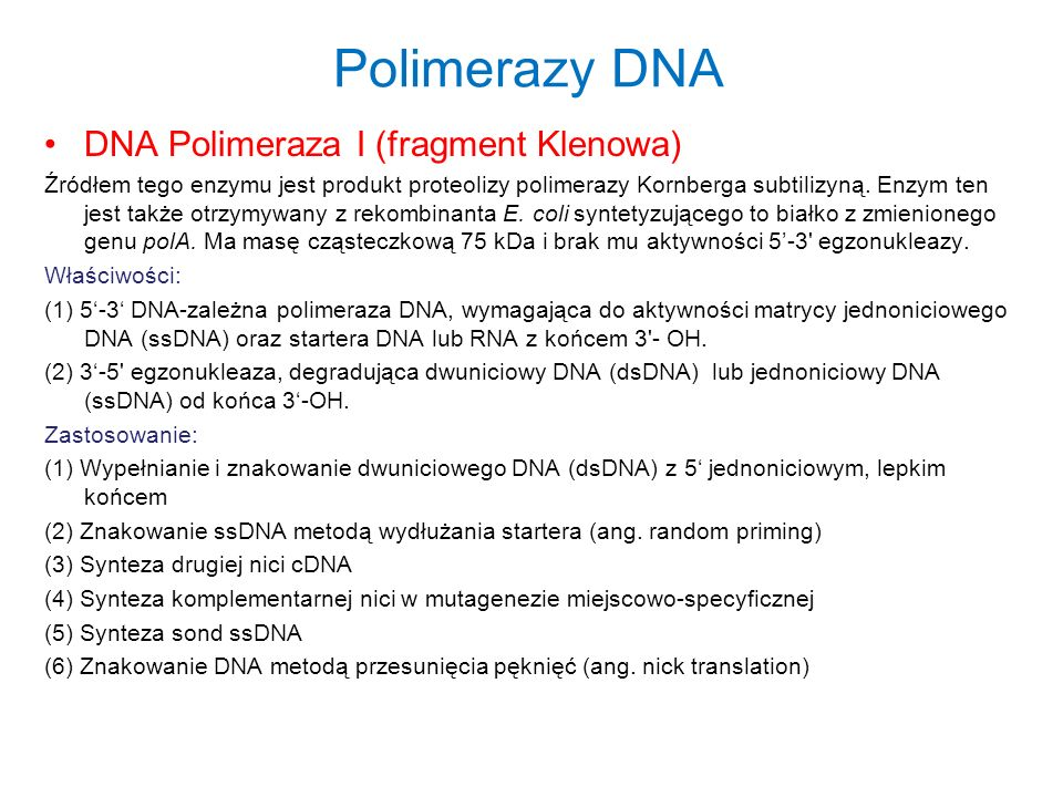 Polimerazy DNA DNA Polimeraza I (fragment Klenowa)