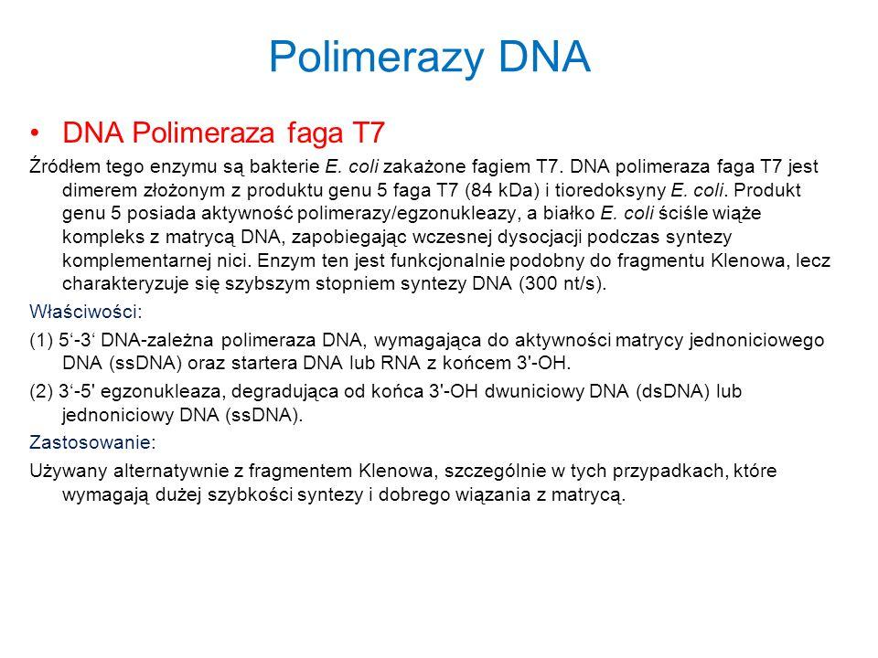 Polimerazy DNA DNA Polimeraza faga T7