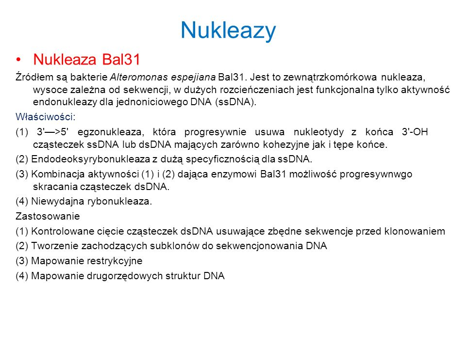 Nukleazy Nukleaza Bal31.