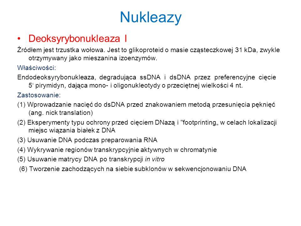 Nukleazy Deoksyrybonukleaza I