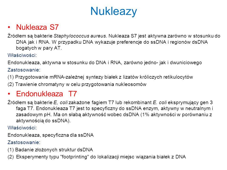 Nukleazy Nukleaza S7 Endonukleaza T7