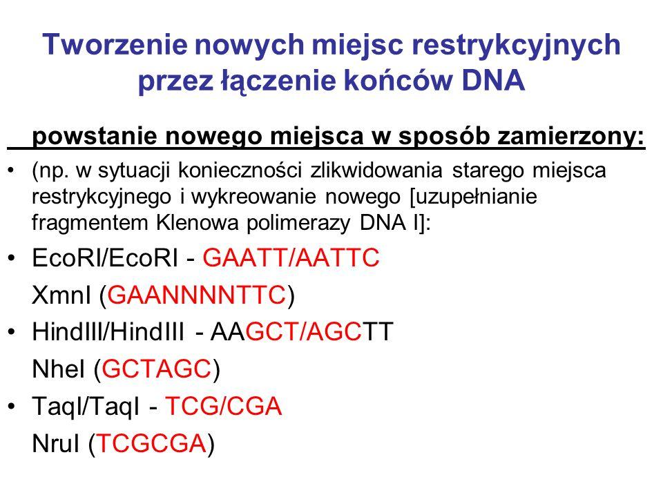 Tworzenie nowych miejsc restrykcyjnych przez łączenie końców DNA