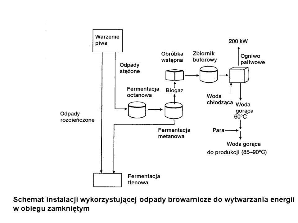 Schemat instalacji wykorzystującej odpady browarnicze do wytwarzania energii