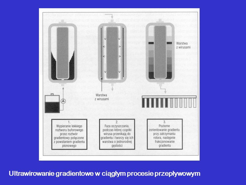 Ultrawirowanie gradientowe w ciągłym procesie przepływowym