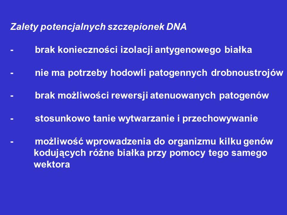 Zalety potencjalnych szczepionek DNA