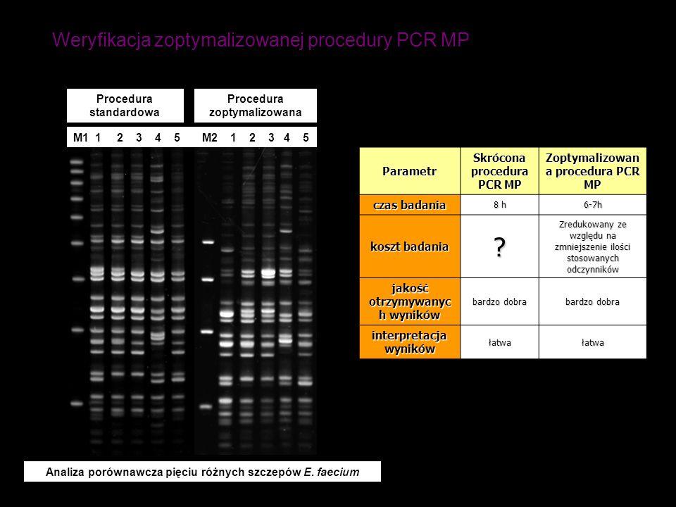 Weryfikacja zoptymalizowanej procedury PCR MP Procedura standardowa