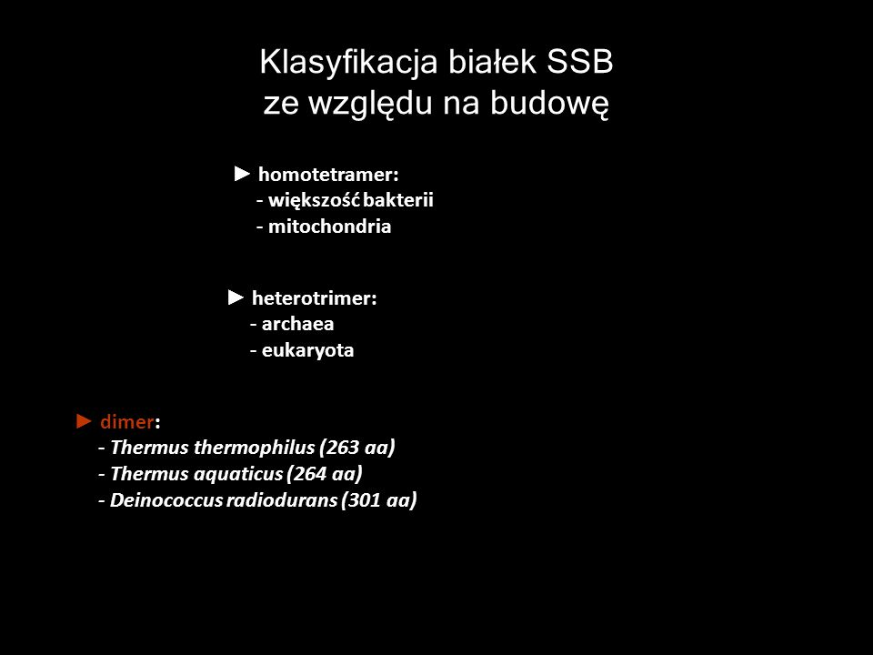 Klasyfikacja białek SSB ze względu na budowę