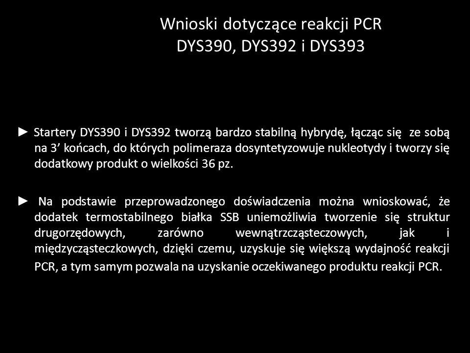 Wnioski dotyczące reakcji PCR DYS390, DYS392 i DYS393