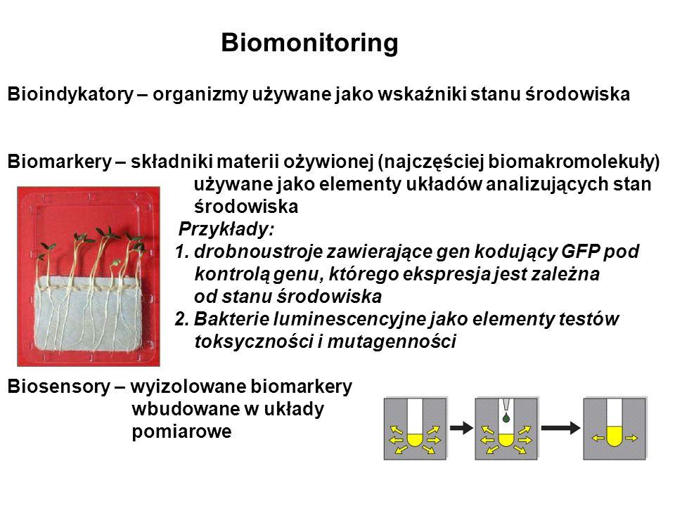 Biomonitoring Bioindykatory – organizmy używane jako wskaźniki stanu środowiska.