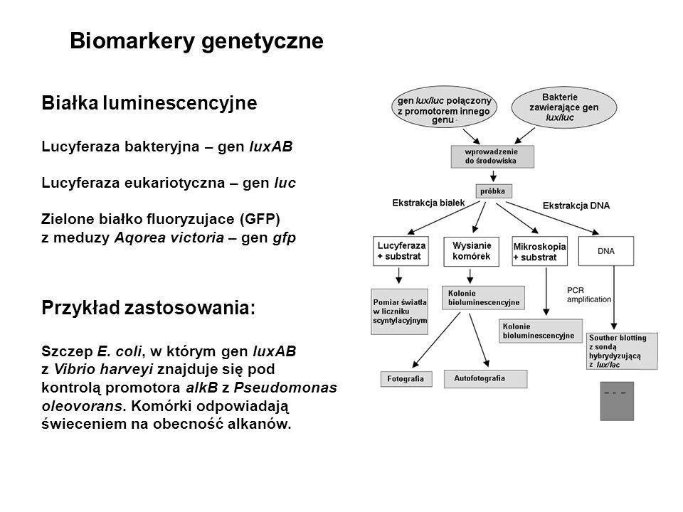 Biomarkery genetyczne