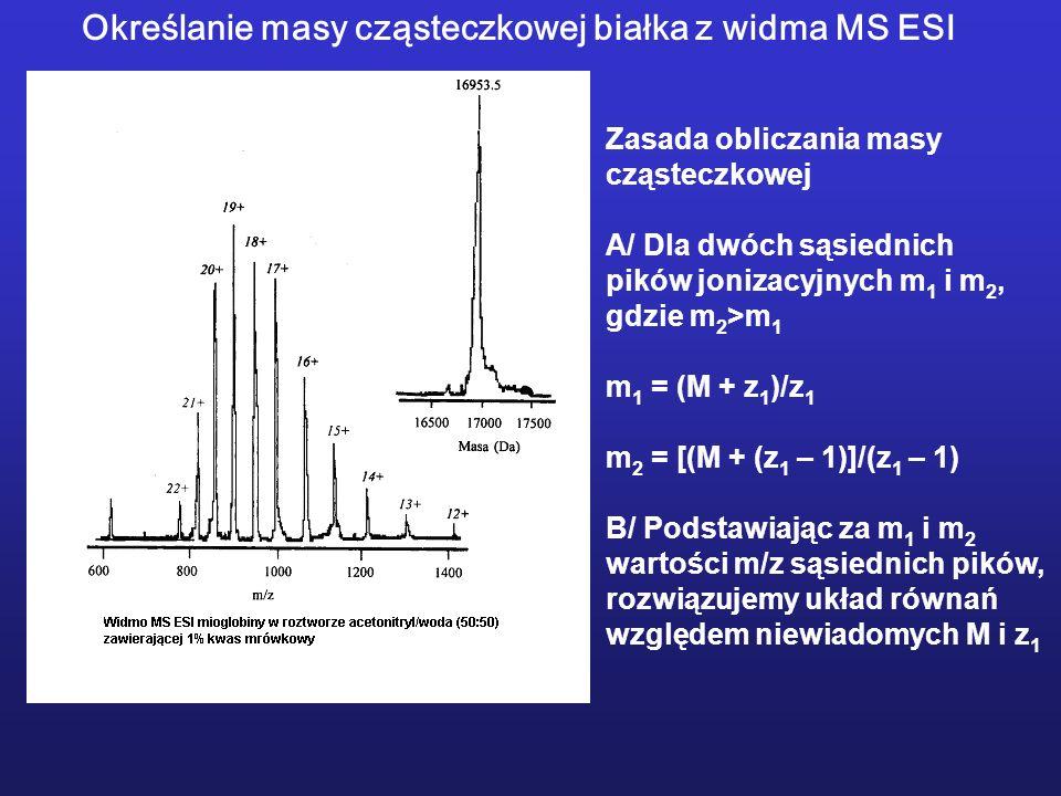 Określanie masy cząsteczkowej białka z widma MS ESI