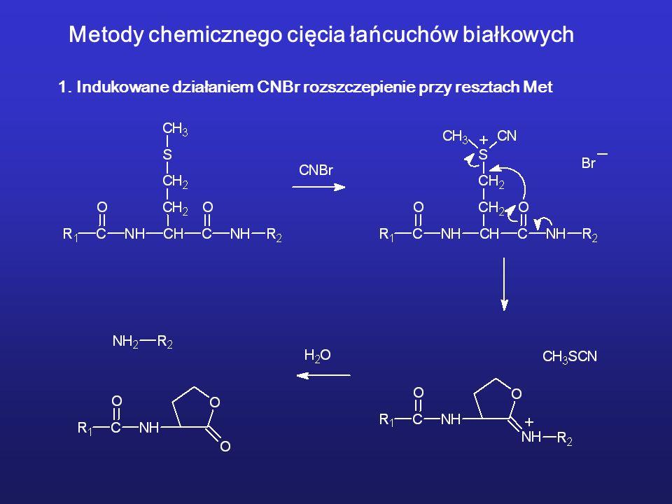 Metody chemicznego cięcia łańcuchów białkowych