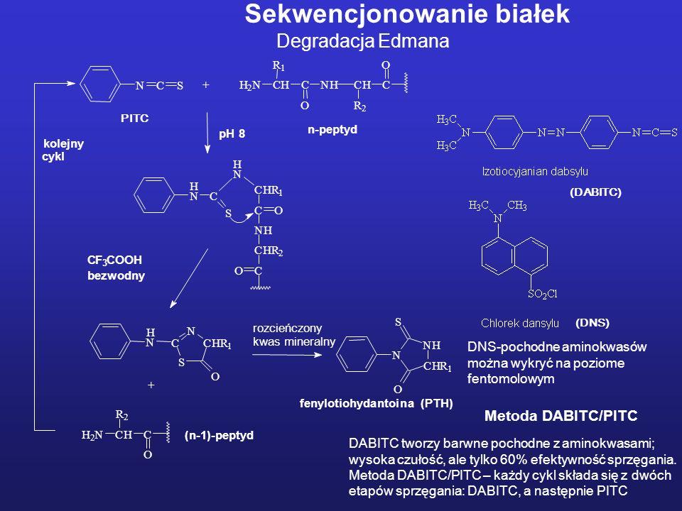 Sekwencjonowanie białek