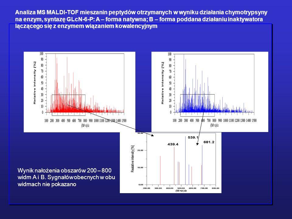 Analiza MS MALDI-TOF mieszanin peptydów otrzymanych w wyniku działania chymotrypsyny