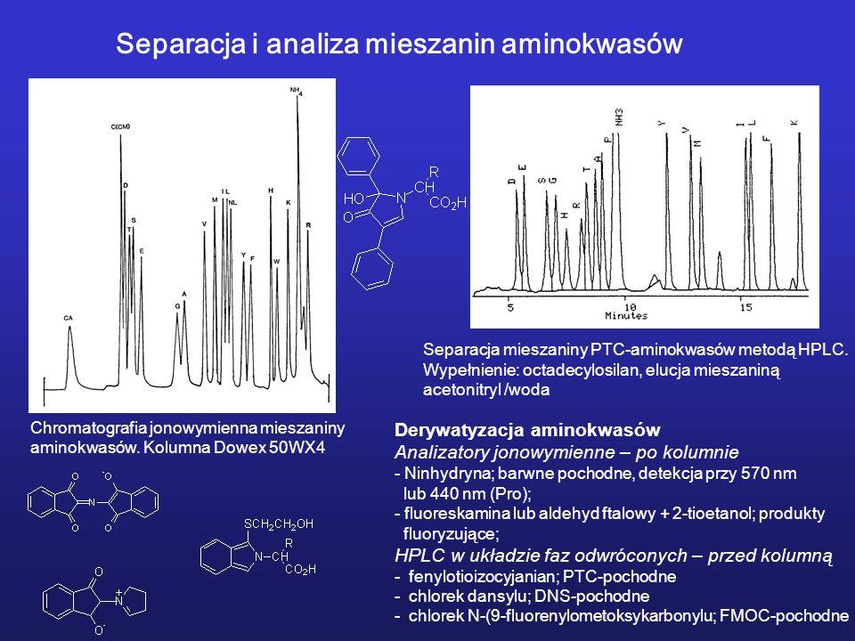 Separacja i analiza mieszanin aminokwasów