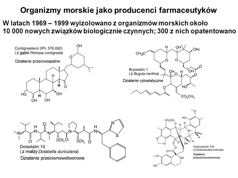 Organizmy morskie jako producenci farmaceutyków
