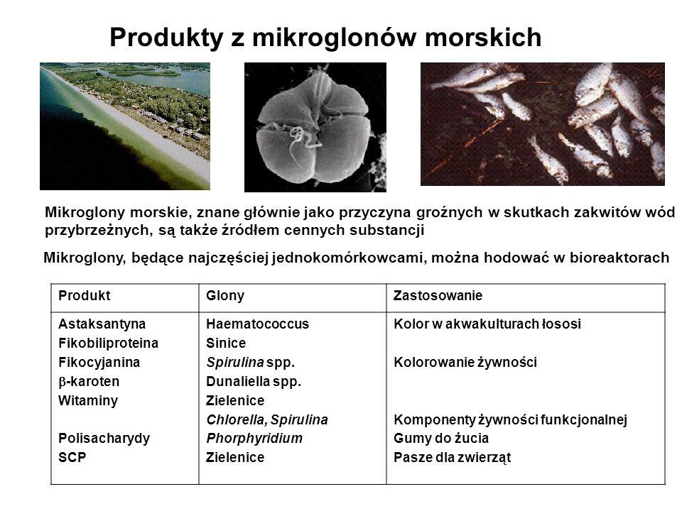 Produkty z mikroglonów morskich