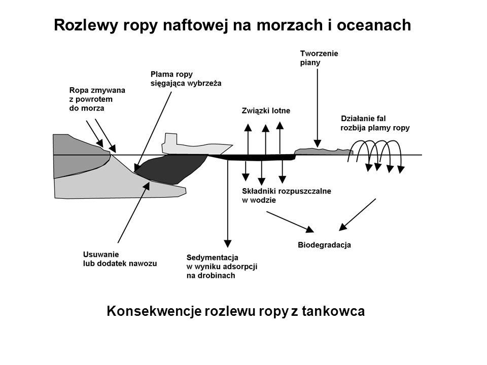 Rozlewy ropy naftowej na morzach i oceanach