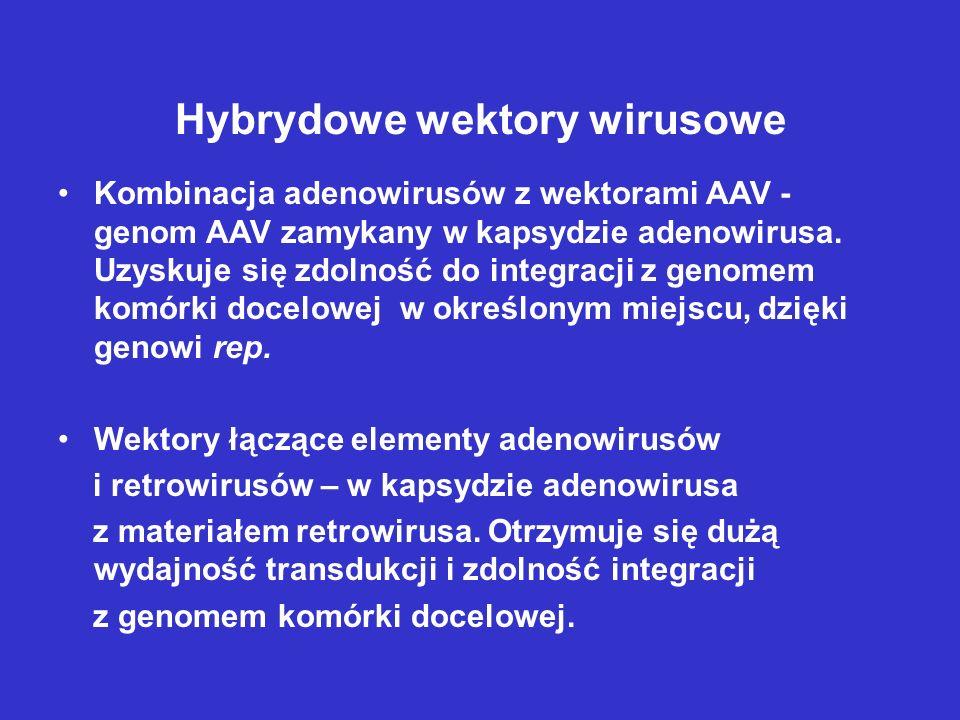 Hybrydowe wektory wirusowe